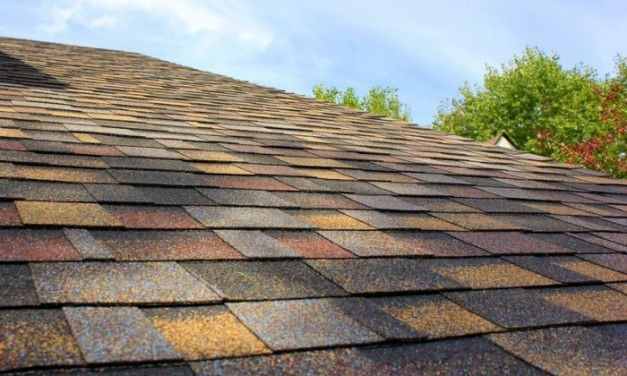 With more options to choose from, homeowners can decide on a roof color that complements their siding or other exterior accessories.