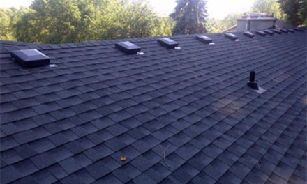 Keeping Roofs In Top Shape There are ways to protect roofs from algae stains and damage.